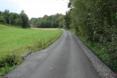 Droga Rzepiennik Suchy koło pomnika po